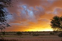 Sunset from urikaruus Desert camp in the Auob river bed in the Kgalagadi Transfrontier Park, Kalahari Desert, South Africa: Photographed by Shane Saunders  (Cape Town, RSA)