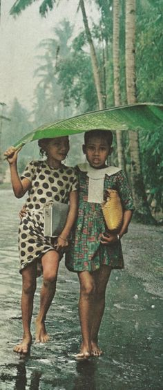 it rains shelter under a banana leaf cowherd boy illustration inspiration