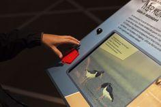 Interaktives Exponat / Hands-On. Das Spiel auf dem Monitor wird mit dem orangenen  Spielstein aktiviert. Punkte werden auf dem Spielstein gespeichert. WattWelten Norderney.  Konzipiert und realisiert von Impuls-Design.