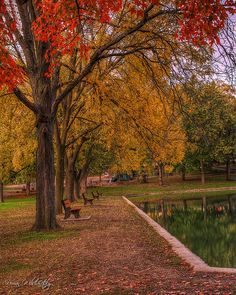 Rising Park - Lancaster by Lost in the Hills, via Flickr