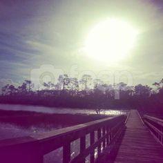Boardwalk in West Palm Beach