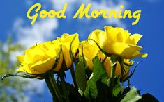 Beautiful Good Morning Greetings Coffee Cup Picture Good Morning Wish