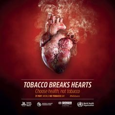 """United Nations on Twitter: """"Tobacco kills over 7 M people each year, despite the steady reduction in its use globally. Key facts from @WHO here: #NoTobacco: https://t.co/9OnWpGMoHS… https://t.co/l9BXcpLwEu"""""""