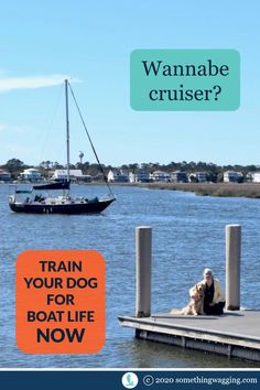 Do you dream of cruising with your dog? Don't wait until you've bought the boat. Start training now! Sailboat Living, Living On A Boat, Dogs On Boats, Long Car Trips, Life Before You, Buy A Boat, Dog Anxiety, Kinds Of Dogs, Pet Travel