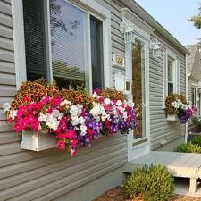 Window Box Store - We have a huge variety of window boxes, flower boxes, window planters and window flower boxes at inexpensive rates for all your container gardening needs! Window Box Flowers, Window Boxes, Window Sill, Flower Boxes, Flower Containers, Window Planters, Wooden Planters, Outdoor Window Trim, Ideal Home Show