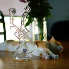 """Prepare for a cat-atonic sesh with the """"Pandora"""" from Sesh Supply. Glass Water Pipes, Evil World, Pipes And Bongs, Adorable Animals, Rigs, Cannabis, Weed, Bowls, Cube"""