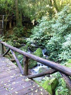 Passeio a Santa Cruz do Sul | Nerd Da Hora