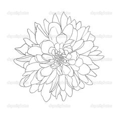 flower illustration drawing - for hot glue stamp on living room wall