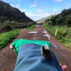 Outdoorsy Mama : Sporting a White Mohawk. Marin Headlands. Northern...