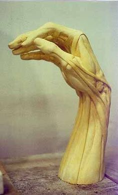Ecorche Hand - Sculpture Created by Michael Keropian. Focusing on anatomy and sculpture which is a modern take on traditional sculpture. Arm Anatomy, Anatomy Poses, Anatomy Drawing, Anatomy Art, Human Anatomy, Statues, Life Drawing, Figure Drawing, Anatomy Sculpture