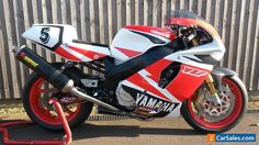 Yamaha Fzr 600, Yamaha Yzf, Ducati, Racing Motorcycles, Motorcycles For Sale, Speed Bike, Sportbikes, Cafe Racer, Classic Bikes