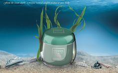 Ocean algae properties and history    http://arcadia.bio/blog/2015/02/26/ocean-algae-properties-and-history/