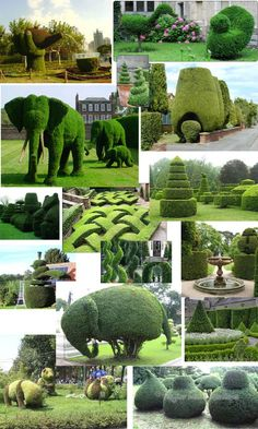topiary collage @Megan Ward Ward Maxwell Gregory  LOOK AT THE ELLIES!!!!!!!