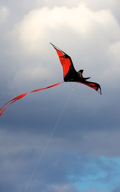 """I've seen one of these get up a really good flap in brisk wind - so funny! A well-made Bat kite doesn't necessarily need a tail... T.P. (my-best-kite.com) """"Bat Kite"""" Cropped from a photo by Adam Lederer on Flickr."""