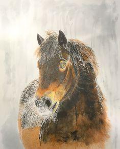 #Dartmoor Snow Ponyuu