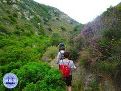 Aktiver-Outdoor-Urlaub - Zorbas Island apartments in Kokkini Hani, Crete Greece 2020 Crete Greece, Aktiv, Outdoor, Island, Nature, Travel, Vacation, Outdoors, Naturaleza