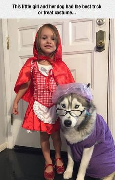 The Perfect Human-Pet Costume Don't forget to share us to...