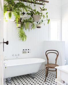 Today I discovered this lovely little bathroom on my friends blog (@lilalivblog). What really caught my attention is this lovely ladder plant installation. What a wonderful idea! I could clearly see that on my balcony as well. Oh well and of course this gorgeous old @thonet_gmbh chair (I bought myself a similar retro model about 6 month ago that is now my bedside table) isnt it adorable? #levaochbo #liivblog