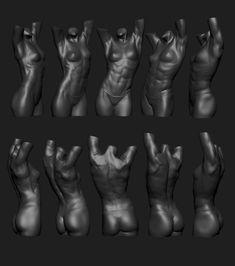 ArtStation - Female Torso Sculpt, Kalin Popov Zbrush Anatomy, Human Anatomy Drawing, Body Anatomy, Anatomy Art, Anatomy Reference, Human Poses Reference, Female Torso, Female Poses, Anatomy Sculpture
