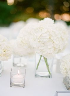 White Hydrangeas Wedding Centerpiece