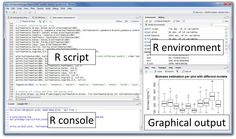 Introduction R is a powerful language used widely for data analysis and statistical computing. It was developed in early 90s. Since then, endless efforts have been made to improve R's user interface. The journey of R language from a rudimentary text editor to interactiveR Studio and more recentlyJupyter Notebooks has engaged many data science communities