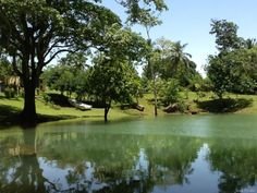 Laguna Cristal, (Provincias: Samaná, Monte Plata y Duarte), R.D.