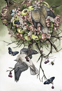 "laurenmarx: "" My piece for Flower Pepper Gallery's Year Anniversary Show"" which opens tonight! ""Collared Doves"" Ballpoint Pen, Ink Pencils, Liquid Ink, Colored Pencils, Graphite and Gel Pen. Animal Art, Sketches, Drawings, Fantasy Art, Illustration Art, Art, Dark Art, Animal Illustration, Bird Art"