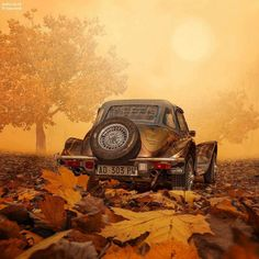 Classic car and autumn leaves.