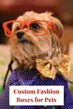 Styled by Wagdrobe with Custom Pet Fashion Boxes {sponsored}