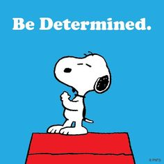 Peanuts and Snoopy - Be Determined! Whatever you do, if you do it with focus and determination, and you'll make a difference! You may not always see it immediately, but that doesn't mean it isn't having an impact in the world. Snoopy Comics, Peanuts Quotes, Snoopy Quotes, Kid Quotes, Cartoon Quotes, Cartoon Pics, Movie Quotes, Peanuts Cartoon, Peanuts Snoopy