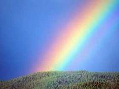 Rainbows....