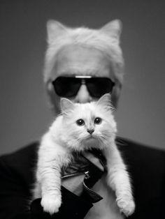 """""""La mode n'est ni morale ni amorale, mais elle est faite pour remonter le moral.""""   Karl Lagerfeld"""