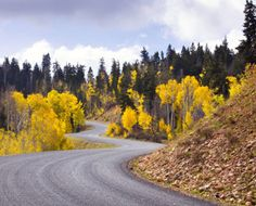 Utah offer widely varied landscapes. Find information and a list of all Utah Scenic Byways.