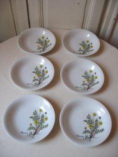6 Assiettes Winterling création Mobil / Assiette creuse porcelaine collector / Décor herbier botanique fleur jaune /Vintage Allemagne-France