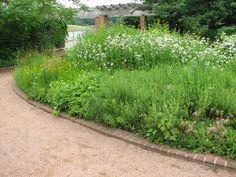 Native Plants, Perennials, Beds, Landscape, Scenery, Bedding, Bed, Perennial, Corner Landscaping
