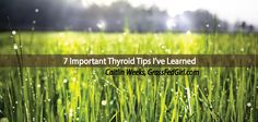 Ever turned to food as a coping mechanism? Learn 7 thyroid tips from someone who understands Hashimoto's, Adrenal Fatigue about how to de-stress and manage