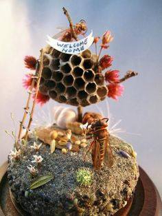 Welcome Home Wasp, insect diorama by Lisa Wood