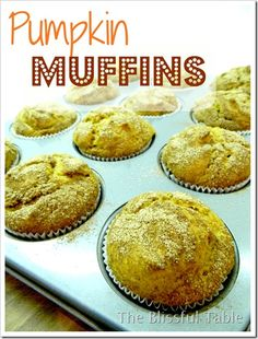 Pumpkin Muffins. I am craving these right now!