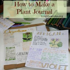 Have you ever thought of keeping a journal of wildflowers or to keep track of your garden progress? Learn tips for creating and keeping a plant journal!