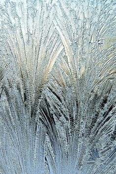 jack frost on the job ... !