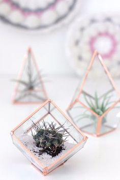 Best DIY Room Decor Ideas for Teens and Teenagers - DIY Glass Terrariums - Best Cool Crafts, Bedroom Accessories, Lighting, Wall Art, Creative Arts and Crafts Projects, Rugs, Pillows, Curtains, Lamps and Lights - Easy and Cheap Do It Yourself Ideas for Teen Bedrooms and Play Rooms http://diyprojectsforteens.com/diy-room-decor-ideas-teens