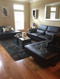My owl contemporary decor Contemporary Decor, Owl, Couch, Furniture, Home Decor, Settee, Decoration Home, Sofa, Room Decor
