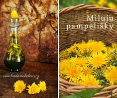 Miluju pampelišky Korn, Glass Vase, Flowers, Gardening, Fitness, Syrup, Lawn And Garden, Royal Icing Flowers, Flower