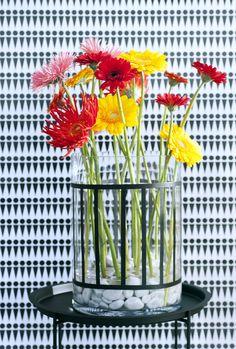 April 2016: Gerbera - Blumenagenda #röttger #Gartencenter