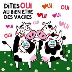 Faites comme Pipelette et Savante. Dites-oui au bien-être des vaches laitières : https://www.facebook.com/les2vaches/app_419709694782169