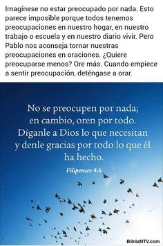 Elianita Morales - Google+