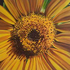 Sunflower painting by Karlin Meehan   www.karlinmeehanstudios.com Happy Art, Sunflowers, Studios, Plants, Painting, Painting Art, Paintings, Plant, Painted Canvas