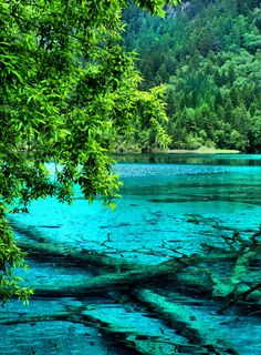 The Cyan Dream Of Jiuzhaigou Valley, China
