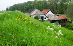 Living behind the river dike - the Netherlands