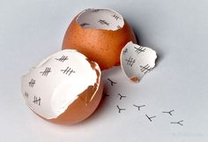 creative+photography+ideas | Creative Egg Drop Project Ideas